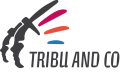 Agence web Tribu & Co